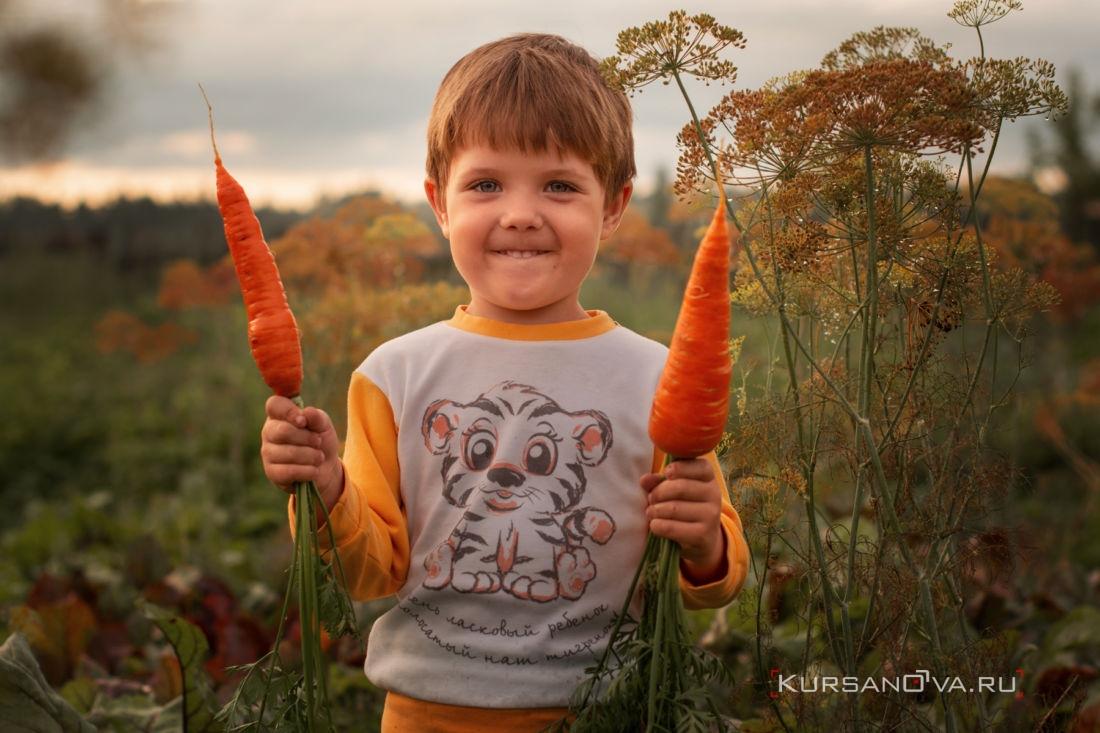 детская фотосессия фотограф заснял мальчика с морковками на улице вечером летом