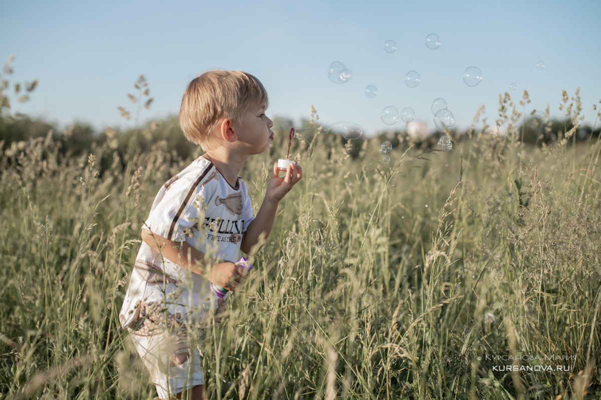 Фотосессия в люпинах поле, закат лето, дети